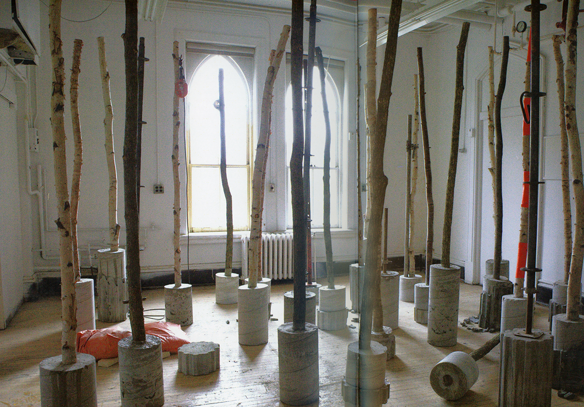 Installation with tree trunks in gallery
