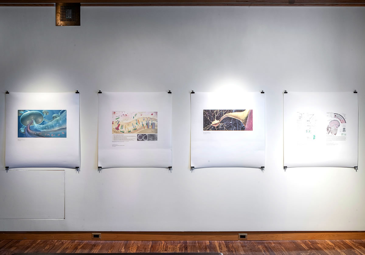 Four diagrams hung on wall