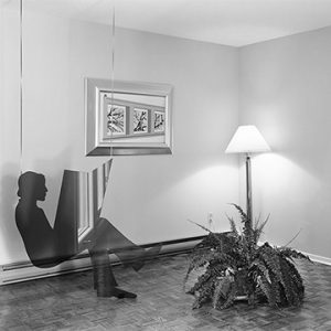 Print of 2D figure, plant, and lamp in living room