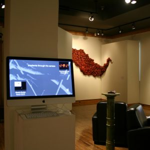 Installation view of Academia Through the Senses