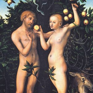 """Lucas Cranach, Adam and Eve, 1538. Oil on wood panel. 41 x 59 cm"""