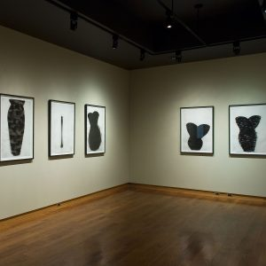 Installation view of On Paper 2: Ideas of Order