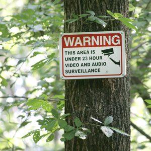 Video Surveillance Warning sign on tree