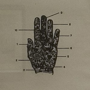 Diagram of ornate hand