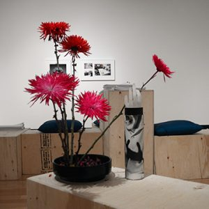 Installation view of Rehearsal for Objects Lie on a Table
