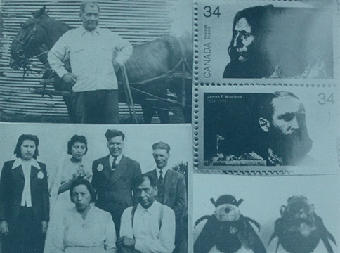 Silkscreen of family pictures, turtle, bees, and stamps