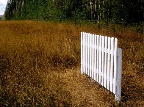 White fence in beige grassy field