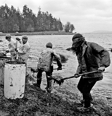 People cleaning up oil spill at Stanley Park