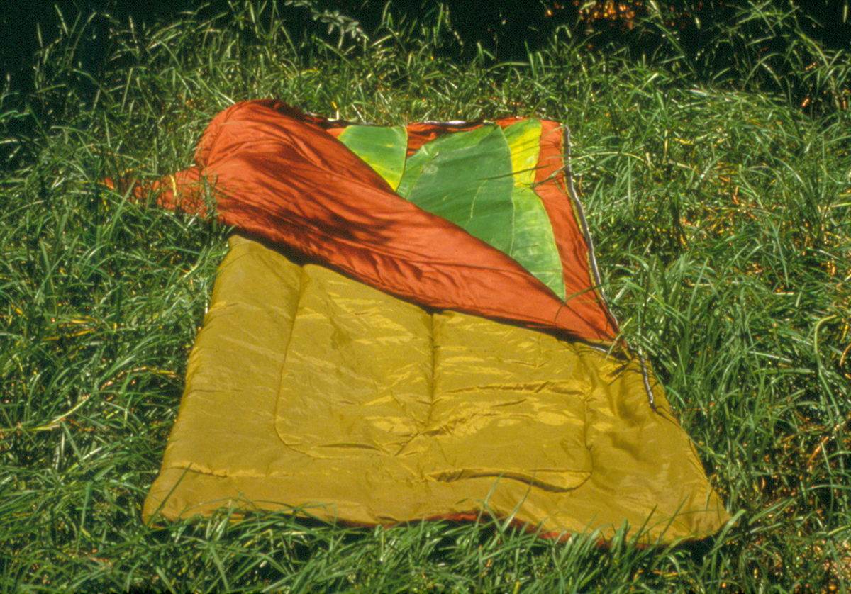 Large leaves inside vibrant sleeping bag on grass