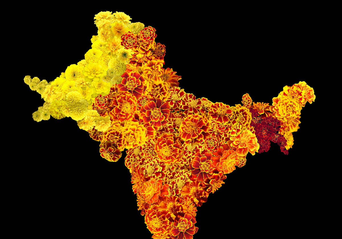 brightly coloured map of India