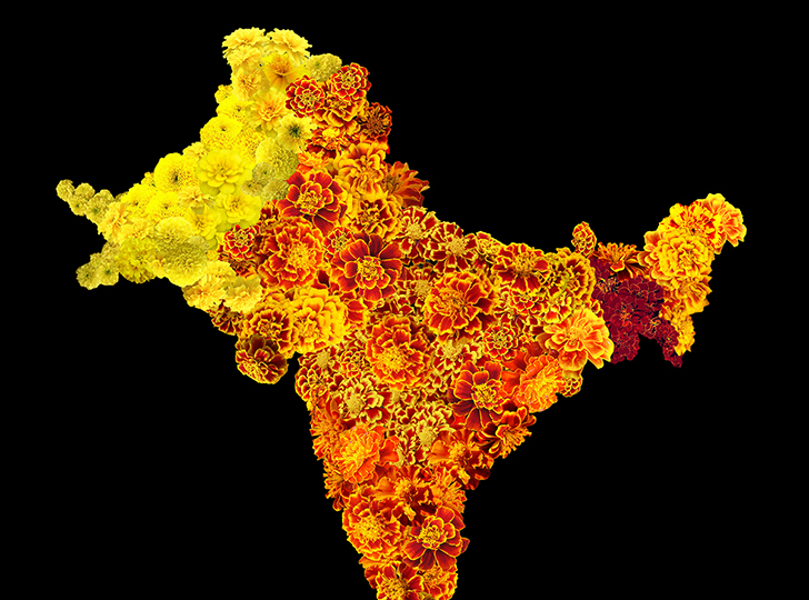 map of India by sarindar dhaliwal