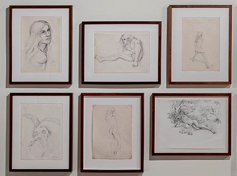 Framed collection of drawings of figure
