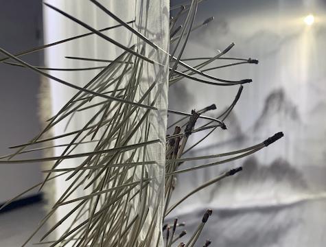 Pine needles stuck through silk organza with mountains in background