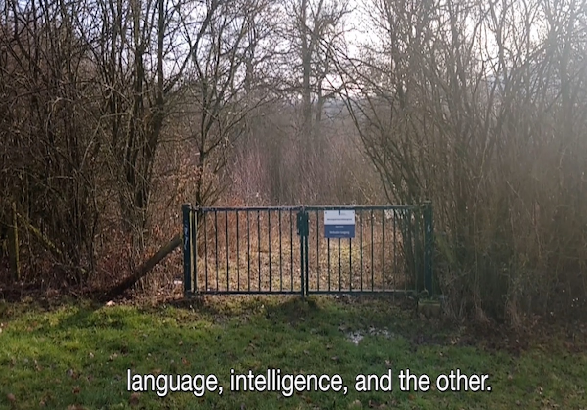 Gate in forest with text that says language, intelligence, and the other